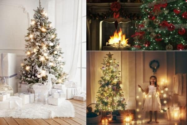 3 different styles of christmas christmas trees