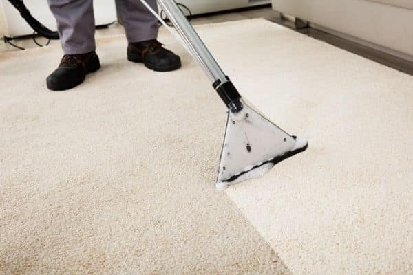Person Carpet cleaning a white carpet