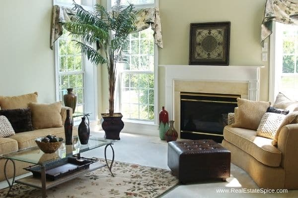 staged well lit beautiful living room with coffee table and rug